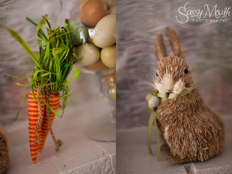 CT Portrait Photo Studio - Spring & Easter Decor 2015 The Sassy Space Sassy Mouth Photography