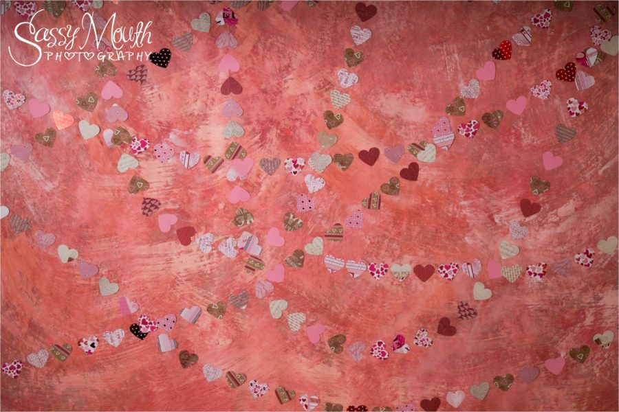 Custom Photo Backdrop for Valentine 2017 created by Artist Marisa Balletti-Lavoie Queen of Sass Photographer Sassy Mouth Photography